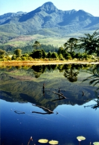Historic first water source for the town of George at the heart of the GRBGarden with Outeniqua mountains reflected