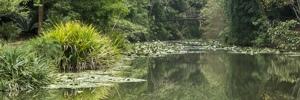 2018 Forest River Flagstaff 206 LTD