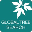 GlobalTreeSearch